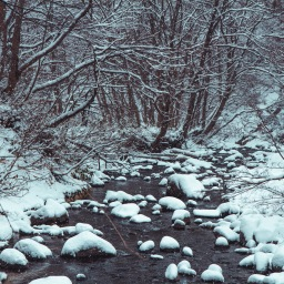 Sparkle in the snow – 17 september 2016